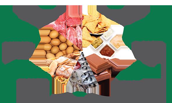 Food protein determination